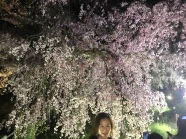 4月26日(水)27日(木)はお休みです。