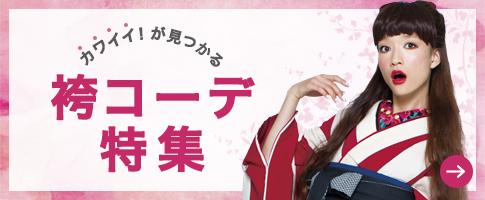 bt_hakama[1]