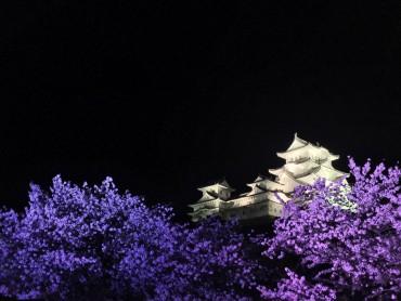 姫路城や、スマスイも、やっと!