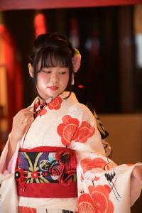 古典柄振袖 鶴 紅梅 前撮り KH179